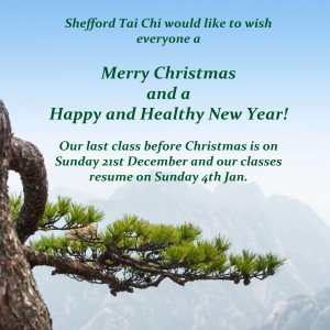 Tai Chi classes Christmas 2014